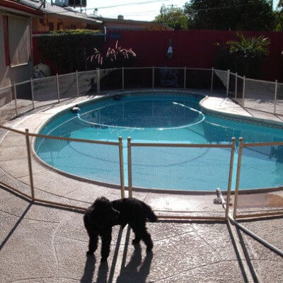 Pet Proof Pool Safety Fences Pool Guard Texas